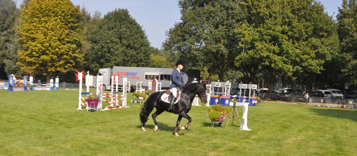 2014-20-9-frodo cc veendam3breed