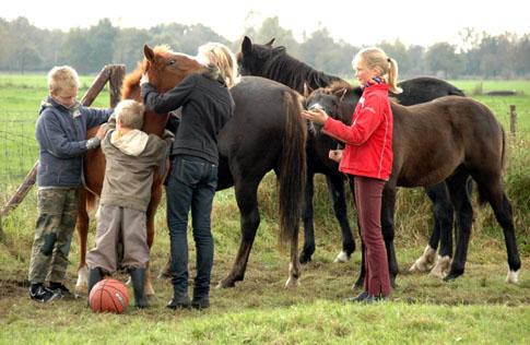 19-10-08 kids met veulens