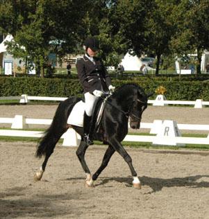 2012 sportdag proef1 draf 2