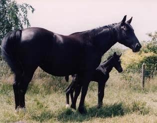 Ellie en Nienna juli 1995