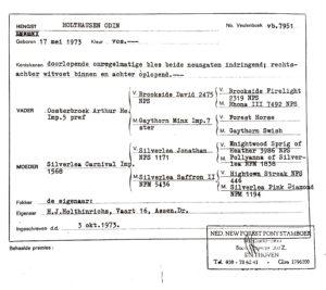 Holthausen Odin papier